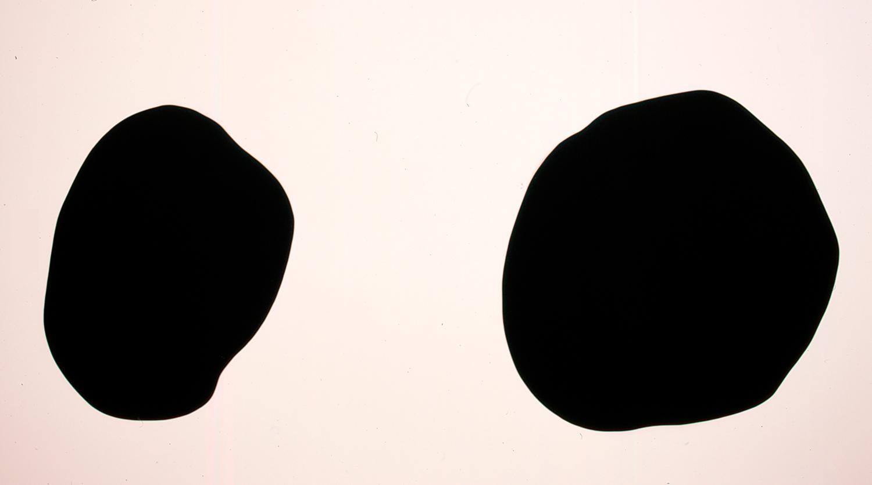Que sepan todos, 2007, Cut felt, Two parts: 160 x 125 cm; 166 x 182 cm