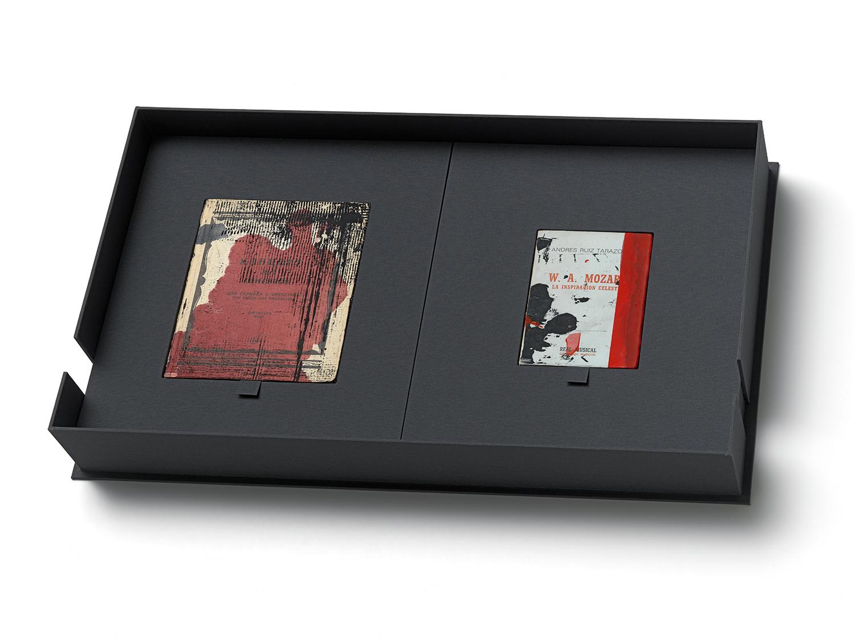 Books, 2012, Set #1 40 x 64 x 10 cm