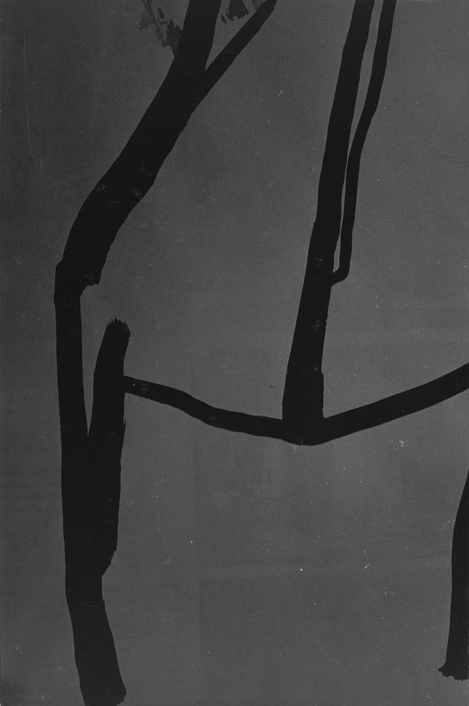 Untitled, 2004, 80 photos, Silver gelatin print, 30 x 20 cm each