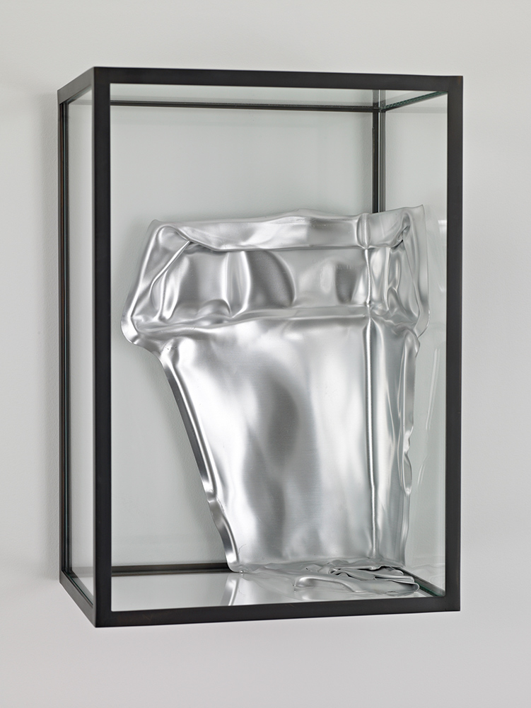 Pan #2, 2008, Aluminum, Glass, Steel, 34 cm x 23,5 cm x 16 cm
