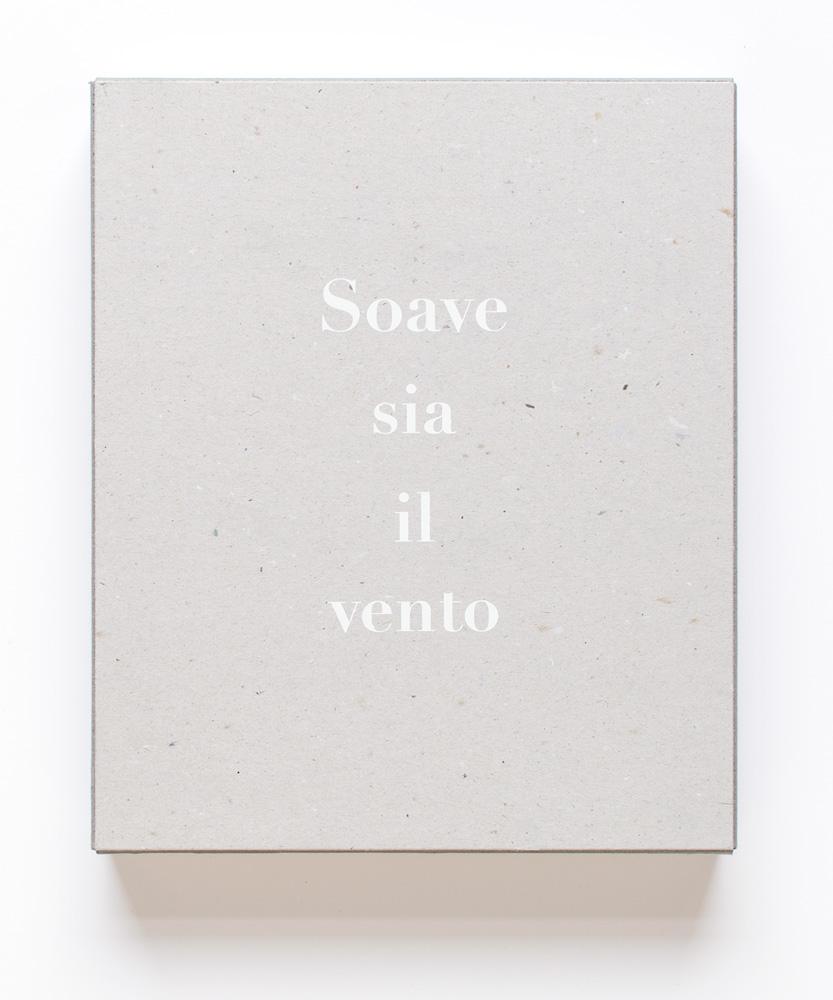 Soave sia il vento Galleria Franco Noero, Torino, 2016