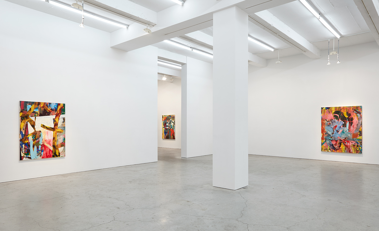 Gallery view, Sikkema Jenkins & Co., New York, 2017