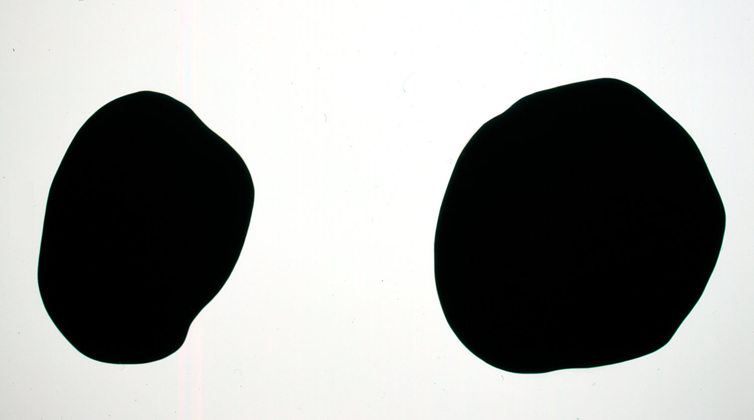 Que sepan todos, 2007, Cut felt, Two parts: 160 x 125 cm; 166 x 182 cm